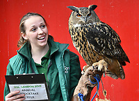 Eagle Owl at London Zoo stocktake<br /> Annual stocktake of every creature in the zoo, spanning 850 species, postponed from January after a fire in just before Christmas last year, in which a number of animals died, at London Zoo <br /> London Zoo Stocktake photocall, London, England on February 07, 2018.<br /> CAP/JOR<br /> &copy;JOR/Capital Pictures