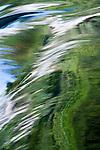 Flowing stream, Grandfather Mountain State Park, North Carolina, USA