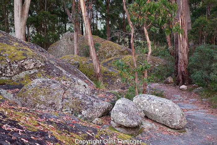 granite boulders, Bald Rock National Park, New South Wales, Australia
