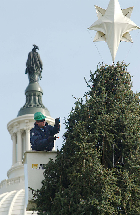 12/3/03.CAPTITAL HOLIDAY TREE--A worker strings lighs on The 2003 Capitol Holiday Tree, a 10,000-pound Engelmann spruce about 70 feet tall from Boise National Forest in Idaho, on the West Front of the U.S. Capitol. The tree lighting ceremony will be Dec. 11..CONGRESSIONAL QUARTERLY PHOTO BY SCOTT J. FERRELL