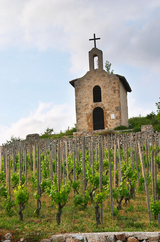 syrah The la chapelle chapel vineyard hermitage rhone france