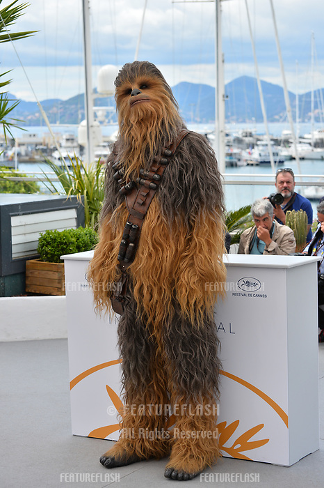 Chewbacca at the photocall for &quot;Solo: A Star Wars Story&quot; at the 71st Festival de Cannes, Cannes, France 15 May 2018<br /> Picture: Paul Smith/Featureflash/SilverHub 0208 004 5359 sales@silverhubmedia.com
