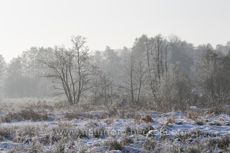 Verschneite Wiesenlandschaft, Wiesen, Weiden, Wintereinbruch im November, Deutschland, Schleswig-Holstein