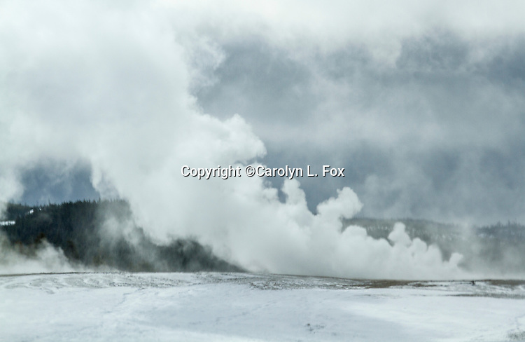 Steam rises from hot pools in Yellowstone.