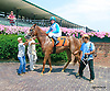 Cowtown Brown winning at Delaware Park on 8/17/15