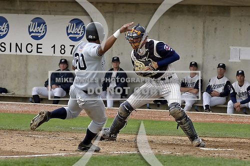 2004 MILB - Fort Wayne Wizards | Mike Janes Photography