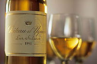 Europe/France/Aquitaine/33/Gironde/Sauternais/Sauternes : Chateau d'Yquem - Dégustation d'un vin de 1991 [Non destiné à un usage publicitaire - Not intended for an advertising use]