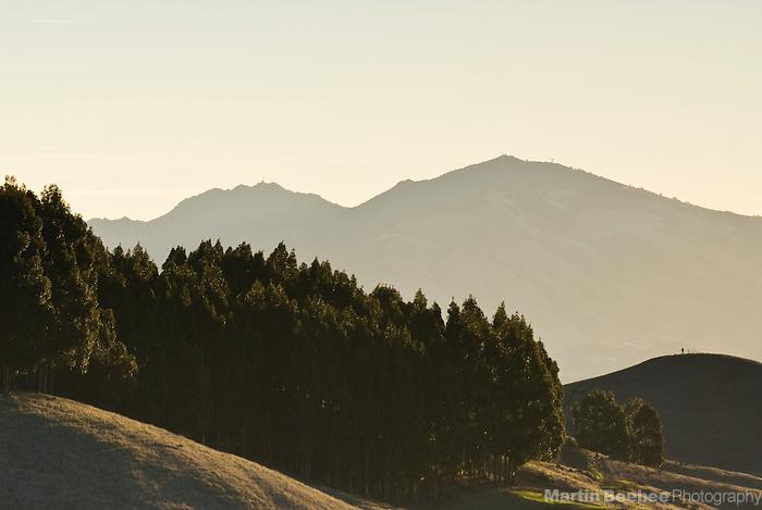 Mount Diablo, seen from Tilden Regional Park, Berkeley, California