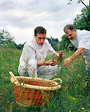 FRANCE, Arbois, chef Jean Paul Jeunet and Second de Cuisine YoAnn Constanty gather fresh herbs in the countryside above Arbois, Jura Wine Region