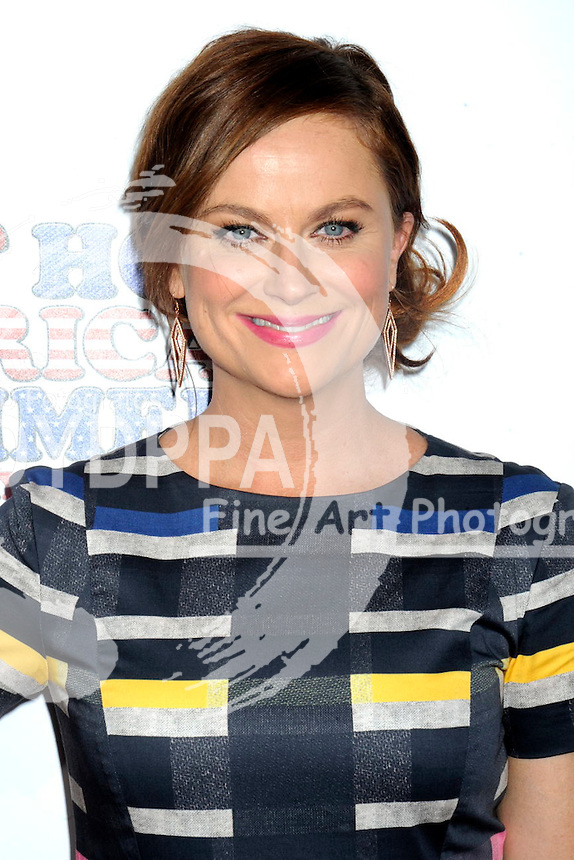 Amy Poehler attending  the 'Wet Hot American Summer: First Day of Camp' Netflix series premiere at SVA Theater on July 22, 2015 in New York City