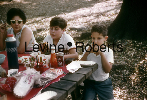 Family picnic at a park in New York in August 1966. (© Richard B. Levine)