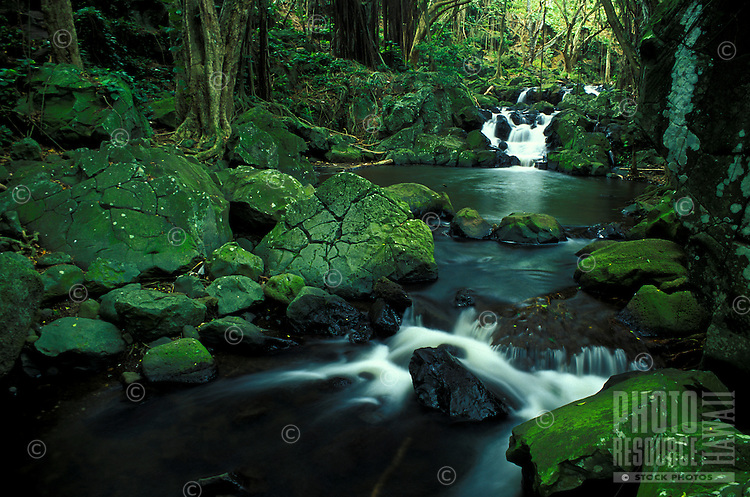 Scenic waterfalls can be seen in the stream below Kapena Falls, Oahu.
