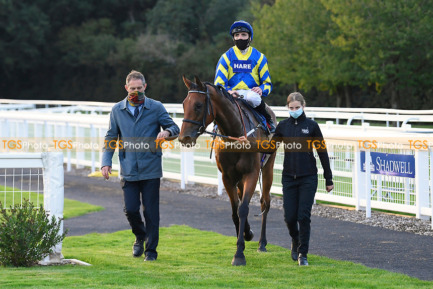 Winner of The Persian Punch Conditions Stakes Trueshan  ridden by Martin Harley and trained by Alan King is led into the Winners enclosure during Horse Racing at Salisbury Racecourse on 11th September 2020