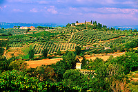 Vineyards around San Gimignano, Tuscany, Italy