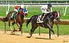 winning at Delaware Park on 8/11/16