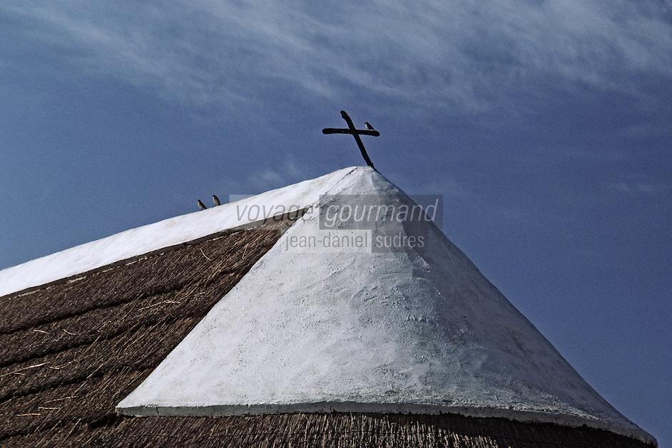 Europe/France/Provence-Alpes-Côtes d'Azur/13/Bouches-du-Rhône/Parc Naturel Régional de Camargue: Détail toiture d'une cabane de gardian