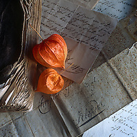 Two Physalis seed pods sit on a backgorund on handwritten letters.