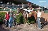 A Nice Rendition winning at Delaware Park on 10/2/13