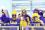 OMAHA, NE - JUNE 26: Tigers fans cheer for their team before Louisiana State University takes on the University of Florida during the Division I Men's Baseball Championship held at TD Ameritrade Park on June 26, 2017 in Omaha, Nebraska. The University of Florida defeated Louisiana State University 4-3 in game one of the best of three series. (Photo by Jamie Schwaberow/NCAA Photos via Getty Images)