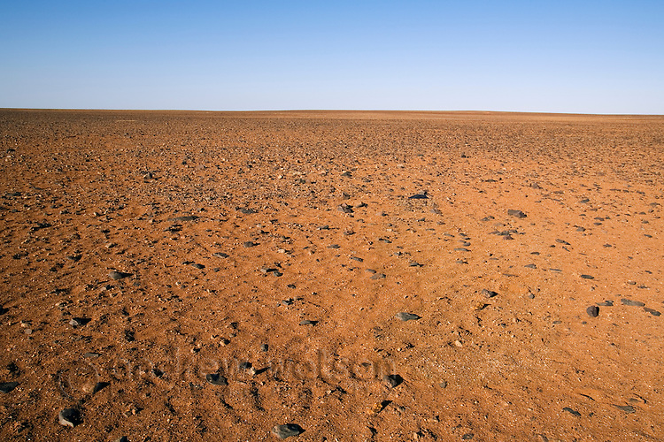 The lunar like desert landscape of the Moon Plain, near Coober Pedy.  The surreal plain has been the setting for many movies including Mad MaxIII, Priscilla Queen of the Desert, and The Red Planet.  Coober Pedy, South Australia, AUSTRALIA.