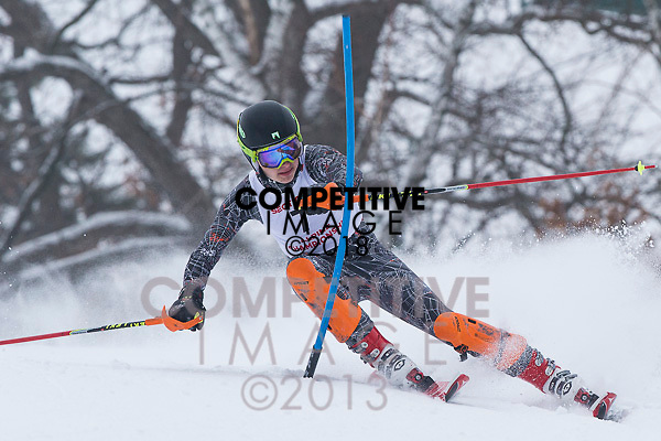 2013 Minnesota High School League Section 5 Alpine Meeting