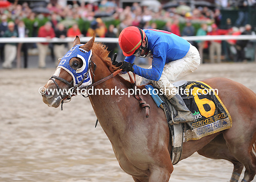 Summer Bird wins the $1 million Travers Stakes at Saratoga on Aug. 29, 2009.