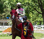 July 24,2020:Hernandez Benjamin on Tiz the Kitten on Quick Call day at Saratoga Race Course in Saratoga Springs, New York. Rob Simmons/Eclipse Sportswire/CSM