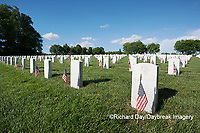 65095-01720 Flags on Memorial Day at Jefferson Barracks National Cemetery, St Louis, MO