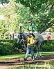 Cayman Croc before The Winter Melody Stakes at Delaware Park on 9/15/16