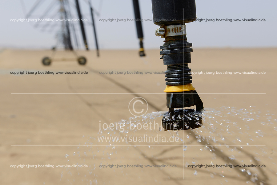 EGYPT, Bahariyya Oasis, Sekem organic farm, Project greening the desert , Pivot irrigation for a new field / AEGYPTEN, Oase Bahariya, Sekem Biofarm, Landwirtschaft in der Wueste, Pivot Kreisbewaesserung fuer eine neues Feld