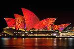 Syudney Opera House is illuminated during the Vivid Light Festival
