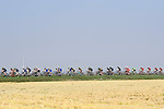 The peloton in action during the 98th edition of Milano-Torino 2017, running 186km from San Giuliano Milanese (Sesto Ulteriano) to the Basilica at Superga, above the city of Turin, Milan, Italy. 5th October 2017.<br /> Picture: LaPresse/Fabio Ferrari | Cyclefile<br /> <br /> <br /> All photos usage must carry mandatory copyright credit (&copy; Cyclefile | LaPresse/Fabio Ferrari)
