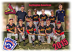 2015 Burlington American Cardinals