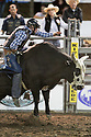 20 Aug 2014: Colby Reilly riding the bull Dr. Feel Good was not able to score during the fourth round of the Seminole Hard Rock Extreme Bulls competition at the Kitsap County Stampede in Bremerton, Washington.