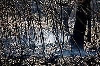 Nova Lima_MG, Brasil...Incendio no Parque Estadual Serra do Rola Moca...The fire in the State Park Serra do Rola Moca...Foto: JOAO MARCOS ROSA / NITRO.