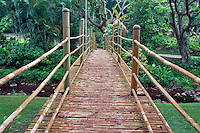 Bamboo bridge in National Tropical Botanical Garden. Kauai, Hawaii