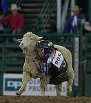 """Nathan Jaillet from Reno competes in the Mutton Bustin' event  during Purple Night at the Rodeo on Tuesday night, June 21, 2016.  """"Man Up Crusade Night"""" encouraged rodeo goers to wear purple for advocacy to stop domestic violence."""