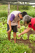 Pará State, Brazil. Students learning horticulture at the Komomoyea Kovoero Secondary School, in Aldeia Indigena Kuxonety Pokee, a Terena village in the Gleba Iriri Indigenous Territory.