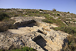 Israel, Shephelah, an ancient wine press in Modiin