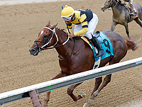 Absolutely Aiden (no. 9), ridden by Ricardo Santana, Jr. and trained by Steven Asmussen, wins Race 5 July 28 at Saratoga Racecource, Saratoga Springs, NY.  (Bruce Dudek/Eclipse Sportswire)