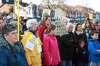 Rustlings Road Tree Protest - Sheffield 2016