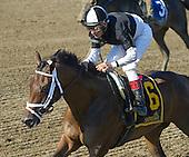 7th Seeking the Ante Stakes - Iron Mizz