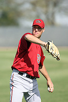 Patrick McAnaney, Arizona Diamondbacks 2010 minor league spring training..Photo by:  Bill Mitchell/Four Seam Images.