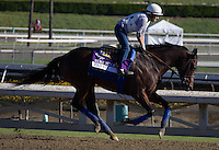 Fed Biz galloping for trainer Bob Baffert at Santa Anita Park in Arcadia California