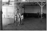 New York, NY August 1988 - Claremont Riding Academy, which was located at 175 West 89th Street and founded in 1899, was the last remaining equestrian facility in Manhattan.