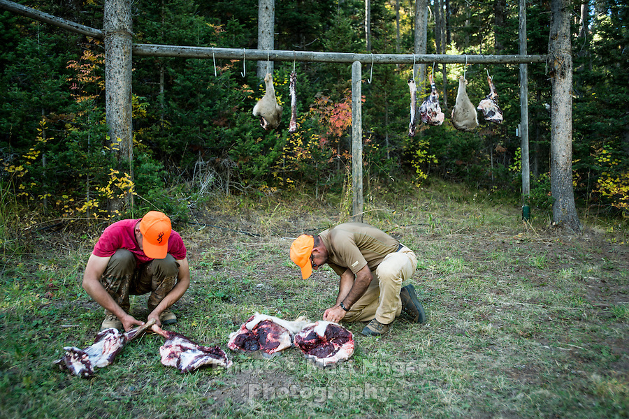 Outdoor Life Editor Andrew McKean and hunter Mike Stock hang meat to cure after a mule deer hunt at Trefren Outfitters on Greyback Ridge in the Hoeback Drainage of Wyoming Region H, outside of Alpine, Wyoming, Tuesday, September 23, 2015. <br /> <br /> Photo by Matt Nager