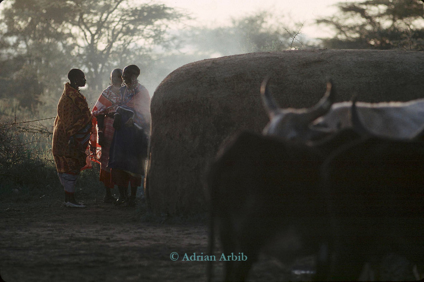 A Maasai woman early morning  sunrise.<br /> A moran manyatta, Kajiado, Kenya.