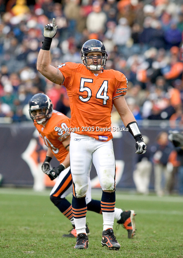 Chicago Bears linebacker Brian Urlacher (54) during an NFL game against the San Francisco 49ers on November 13, 2005 at Soldier Field in Chicago, Illinois. The Bears defeated the 49ers 17-9. (Photo by David Stluka)