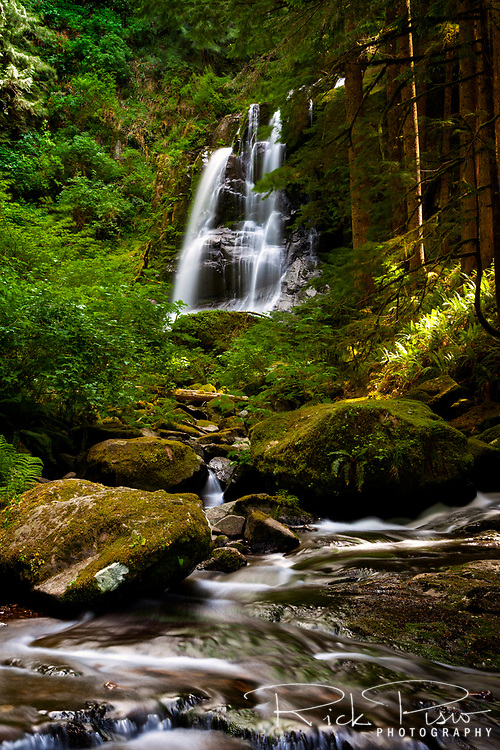 Upper Kentucky Falls in Oregon's Suislaw National Forest near the town of Mapleton.