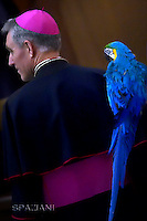 Monsignor Georg Gänswein, holds a parrot during a performance of the Golden Circus in the Paul VI Hall at the Vatican at the end of his weekly general audience Wednesday,  28, December.2016.